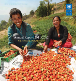 UNDP Annual Report 2011/2012: The Sustainable Future We Want